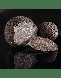 Trufas negra fresca, 37 gr, ultima cosecha