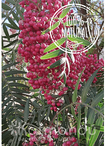 Aceite Esencial Pimienta Rosa (Molle) 5 ml.