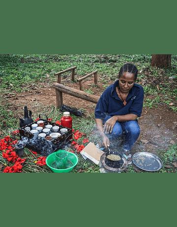 Café Microlote Etiopia Tega & Tula Farm