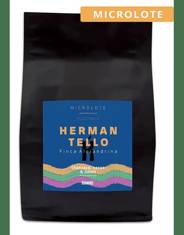 Café Microlote Guatemala Herman Tello Lavado