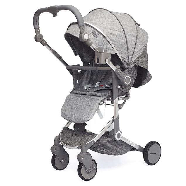 Coche Paseo Deluxe Gris