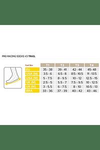 Pro Racing Socks V3.0 TRAIL, Compressport