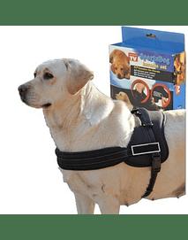 Arnés para Deporte, Sport Dog