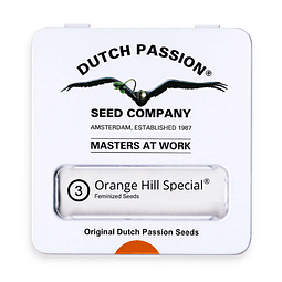 Orange Hill Special x3