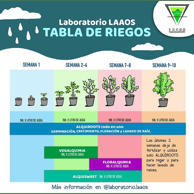 Kit LAAOS full