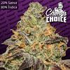 Blue Kush Berry x3 - Chongs Choice