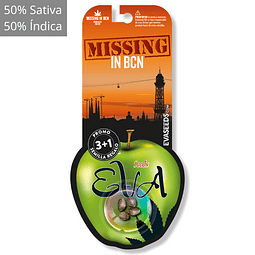 Missing in barcelona 3+1