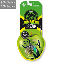 Jamaican dream 3+1