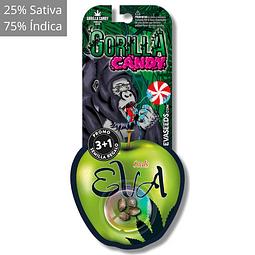 Gorilla candy 3+1