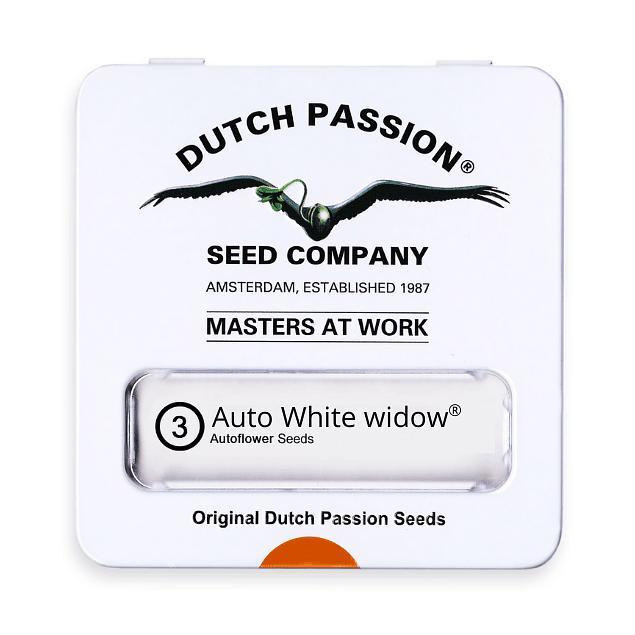 Auto White widow x3