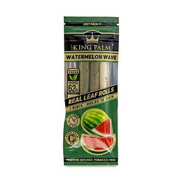Conos Mini Watermelon x2 KingPalm
