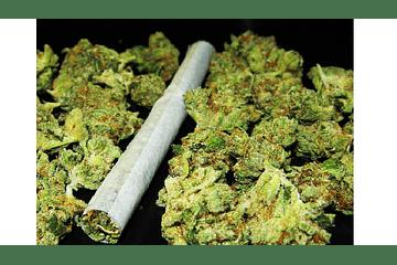 Como transportar Cannabis durante un viaje. ¡Fuck the police!