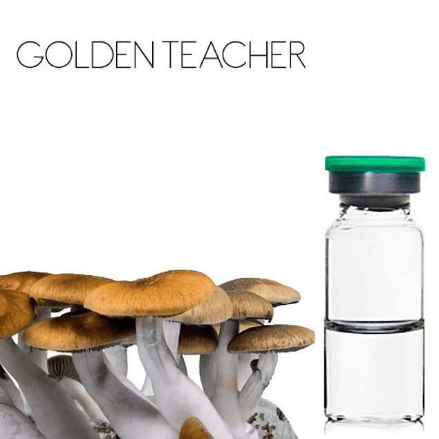 Vial Golden teacher 10ml