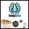 Kit de Cultivo FungiLabs