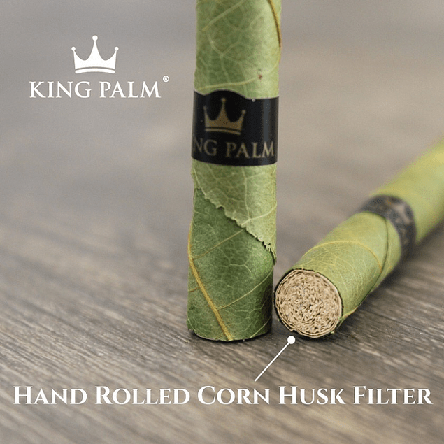 Filtros maíz King Palm