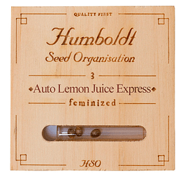Auto Lemon juice express x5