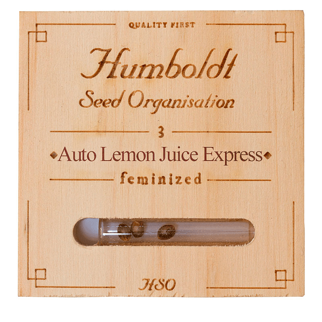 Auto Lemon juice express x5