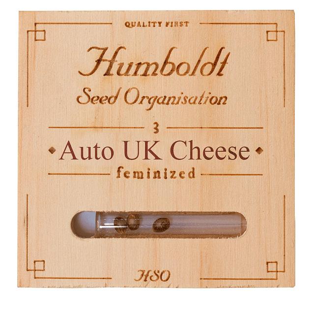 Auto UK cheese x5