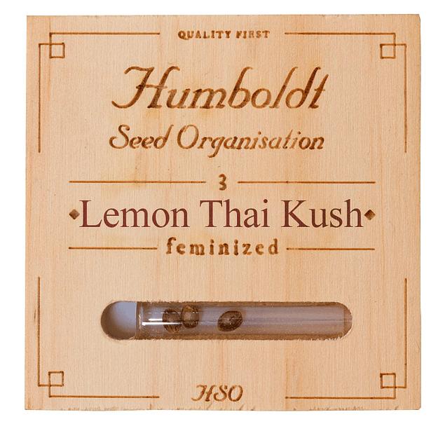 Lemon thai kush x3