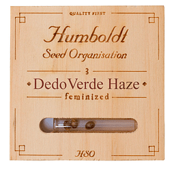 Dedoverde Haze x3