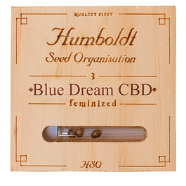 Blue dream CBD x3