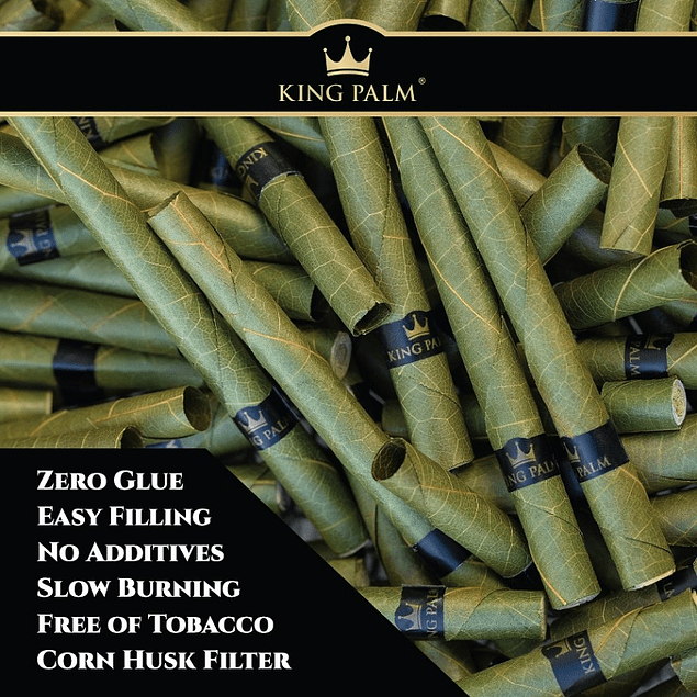 Conos Kingsize x10 King Palm