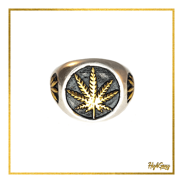 King ring Silver & Gold