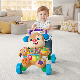 Fisher Price Perrito Andadera