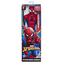 Titan Hero Spider Man