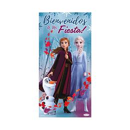 Afiche Metalizado De Frozen II