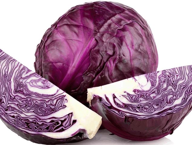 Red Cabbage LB