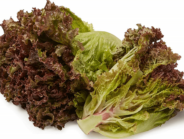 Red leaf Lettuce EA