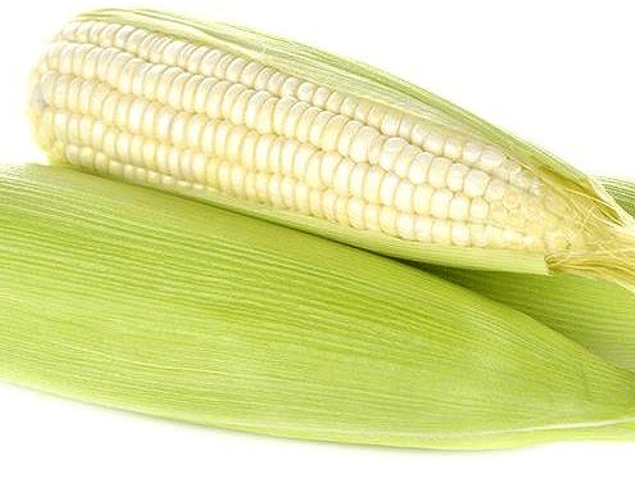 White Corn EA