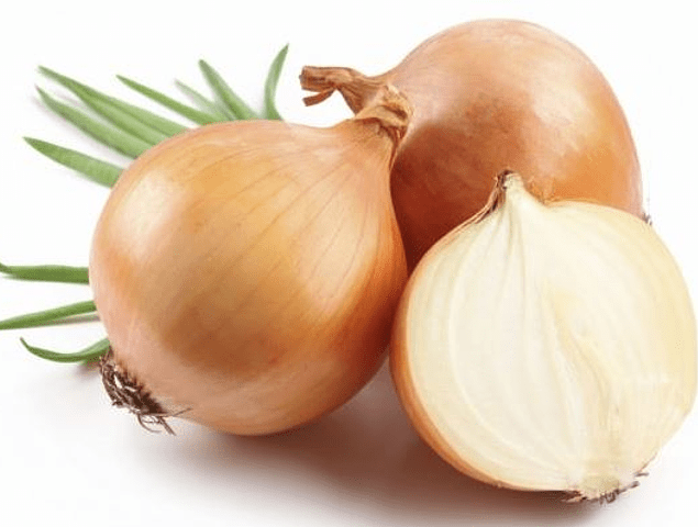 Brown Onion LB