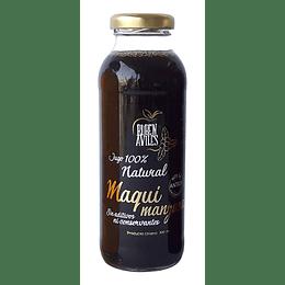 Jugo 300ml Ruben Aviles - Maqui Manzana