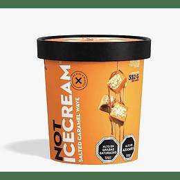 Not Ice Cream - Salted Caramel Wave