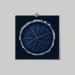 Lámina Círculo Fondo Azul