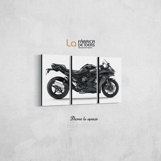 Moto Ninja H2 SX