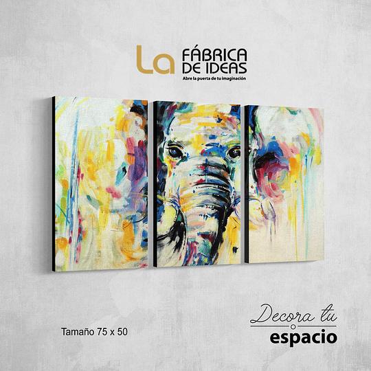 Cuadro Animales Elefante 3 piezas