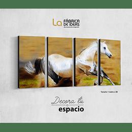 Cuadro animales Caballo Blanco set de 4