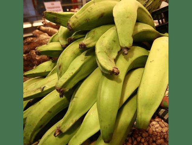 Plátano Macho