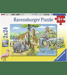 Puzzle 2x24 Bienvenidos al Zoo - Ravensburger