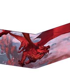 Pantalla del DM - Dungeons and Dragons Reencarnada