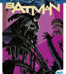 Batman Vol.2 Yo soy Suicida
