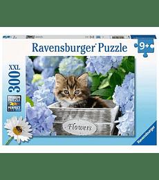 Puzzle 300 Pcs - Tortoiseshell Kitty Ravensburger