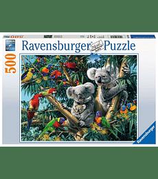 Puzzle 500 Pcs - Koalas in a Tree Ravensburger