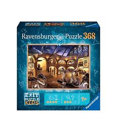 Puzzle En el museo de historia natural - 368 piezas