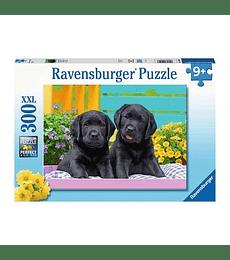 Puzzle XXL Vida de perritos - 300 piezas