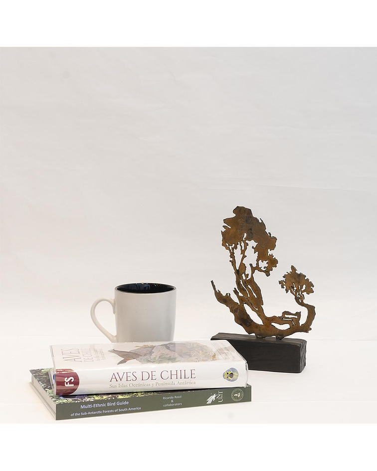 Escultura de acero y madera
