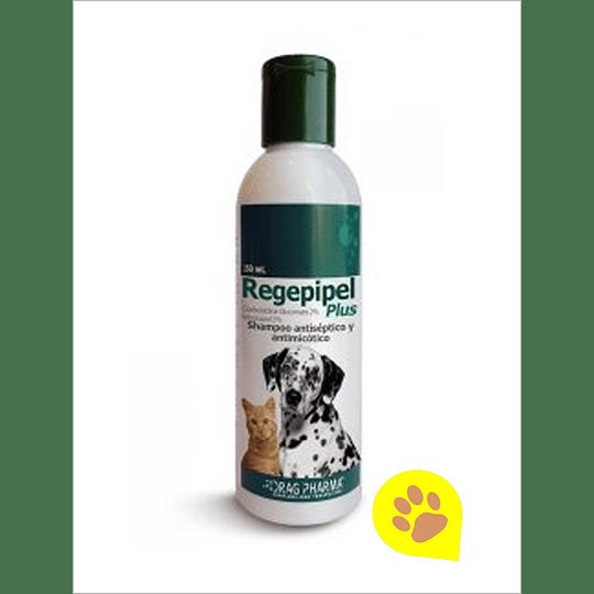 Regepipel Shampoo Antisepctico - 150 ml